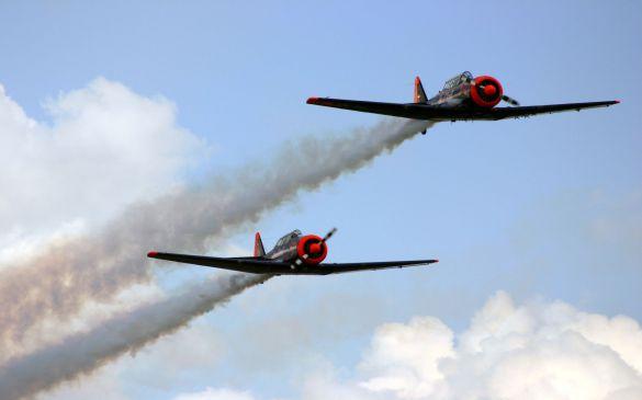 Flugtag 2007, North American T-6 Walter und Toni Eichhorn